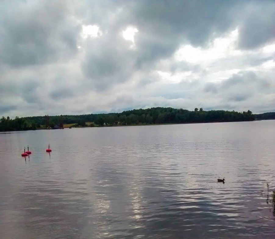 The Taxinge Lake