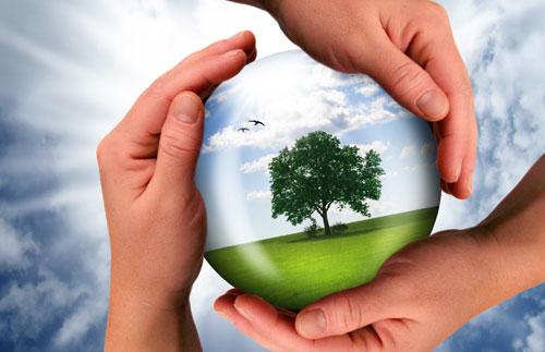 energy-sustainability21056