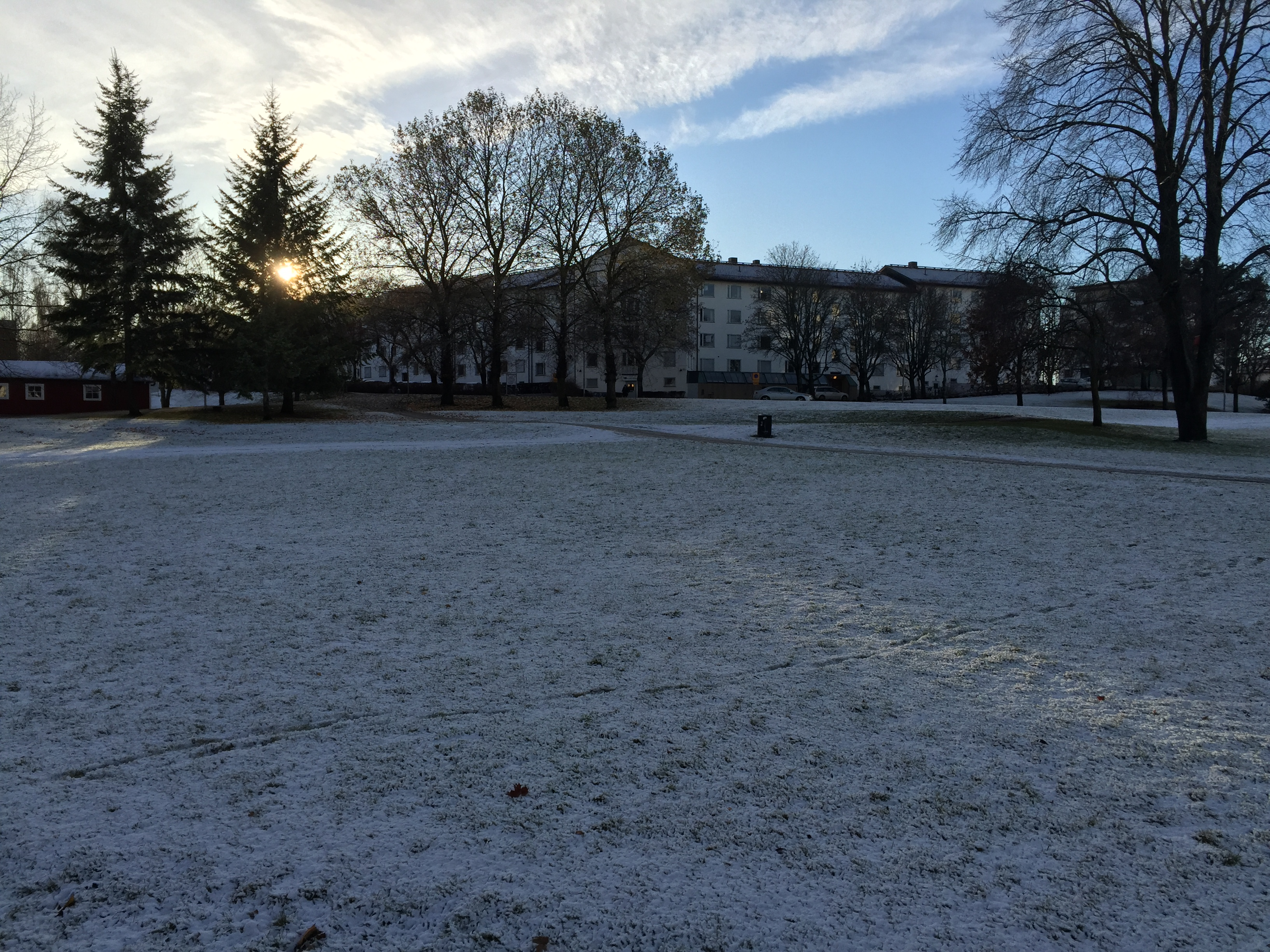 Seeing snow for the first time!   Study in Sweden: the student blog