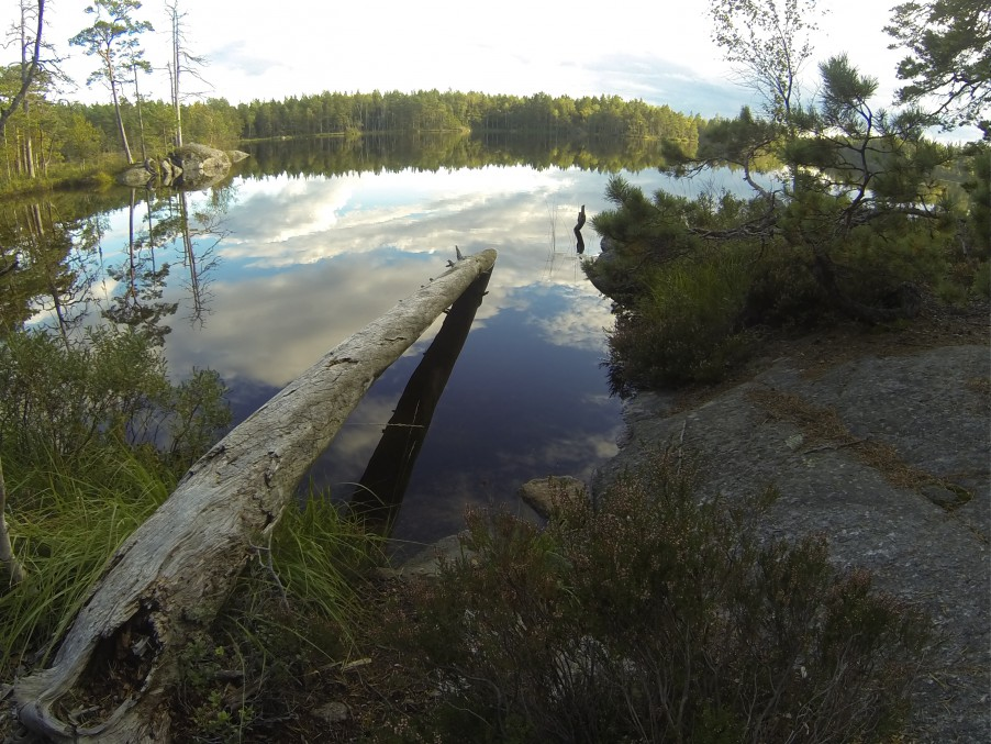 Lake in Tyresta