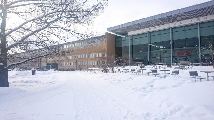 Umea university business school