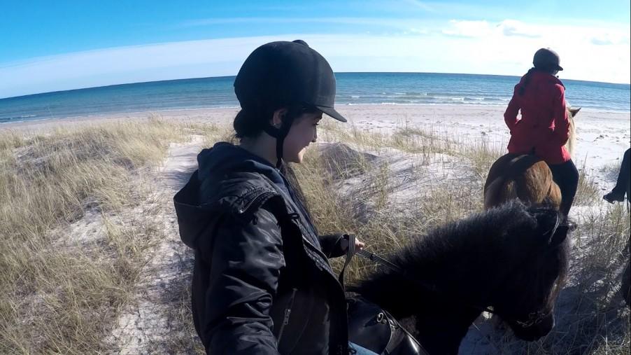 horse back riding Fårö Gotland