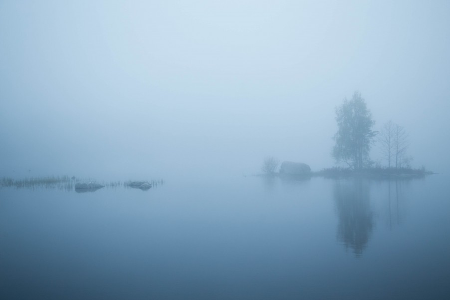 Fog_Umea-2