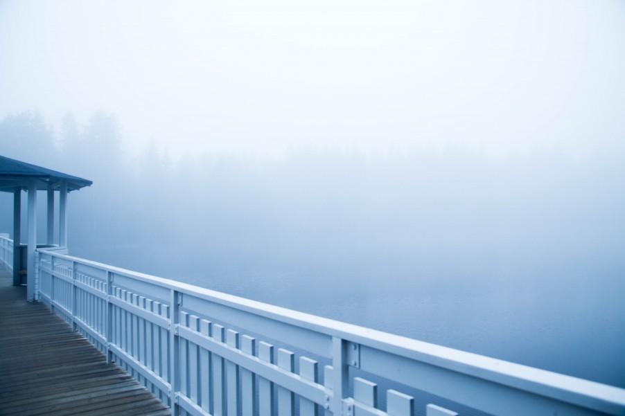 Fog_Umea-6