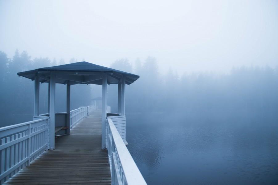 Fog_Umea-7