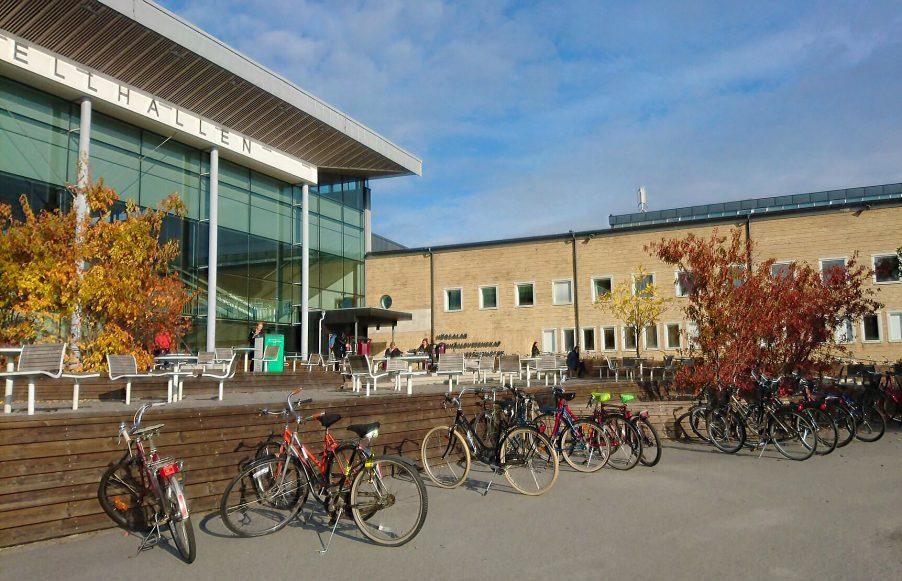 Umea_university