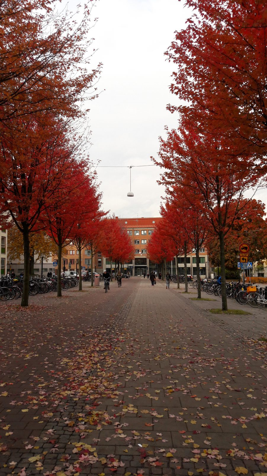 Autumn in Gothenburg