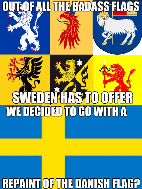 funny-picture-sweden-flag