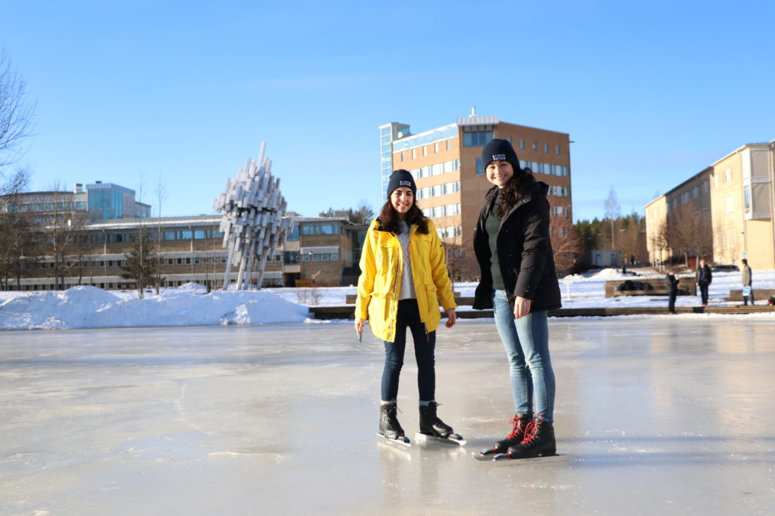 Adult Guide in Umea