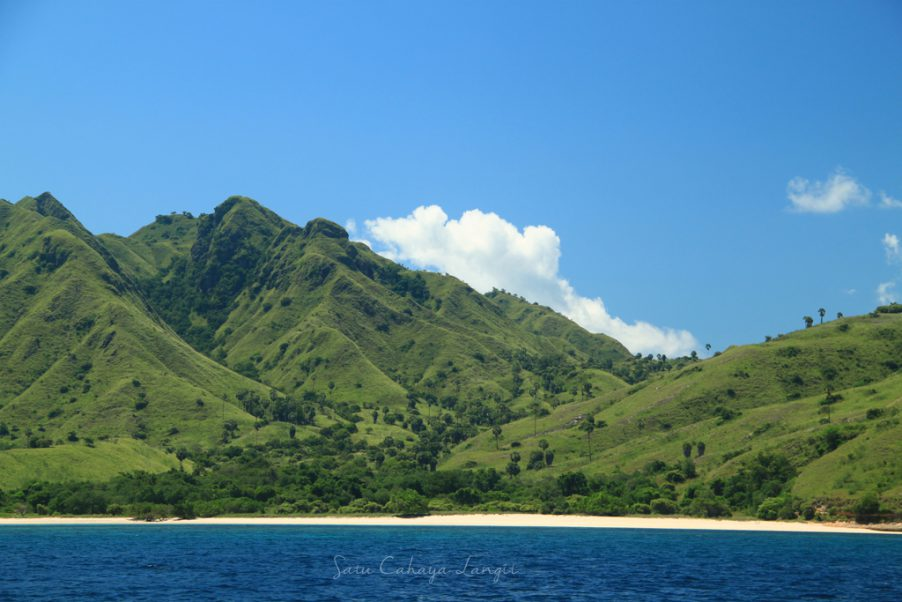 Landscape in Komodo National Park in Indonesia