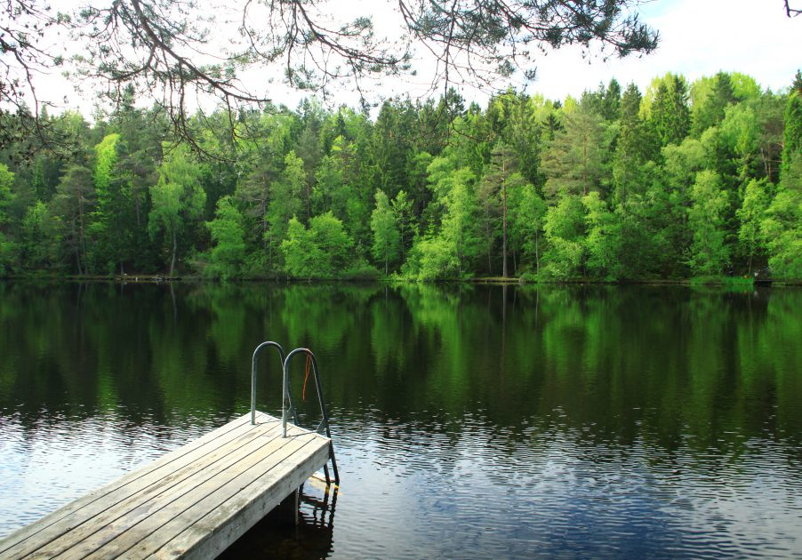 Lakes in Swedish forest