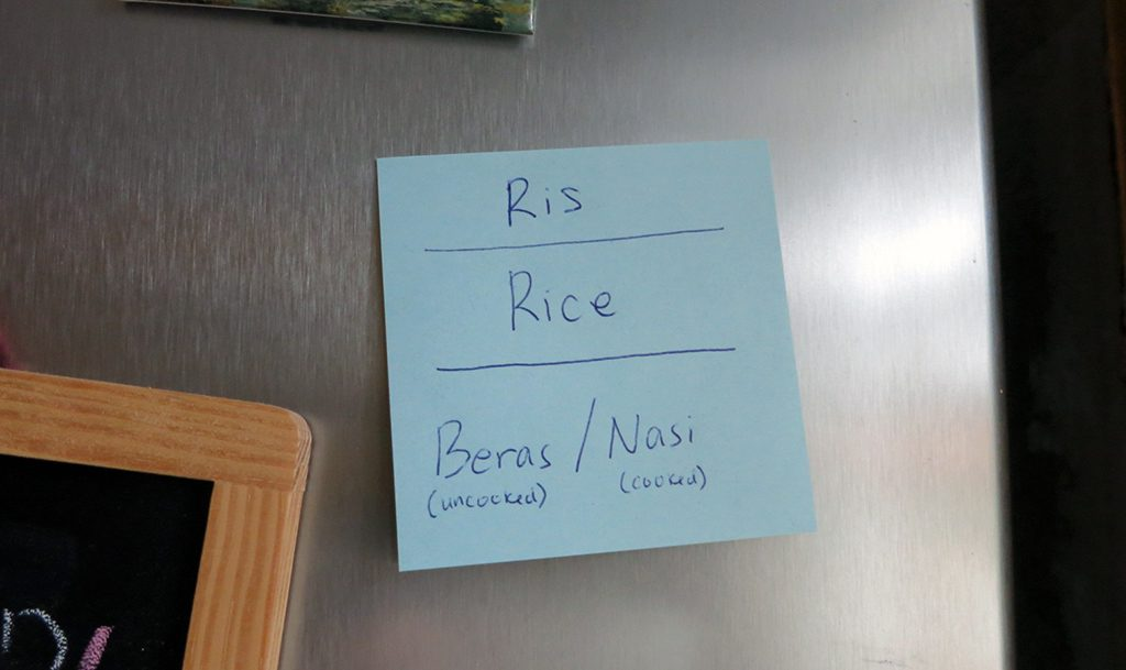 ris rice nasi