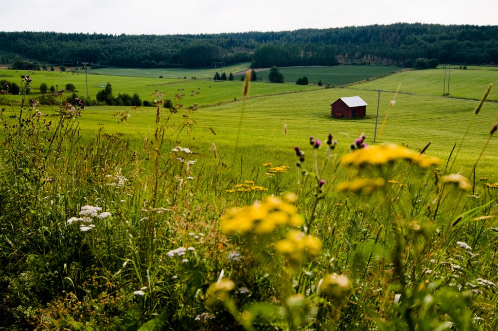 Rural agricultural land in Sweden