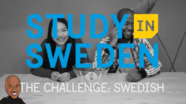 Photo showing the study in Sweden logo witht he swedish challenge