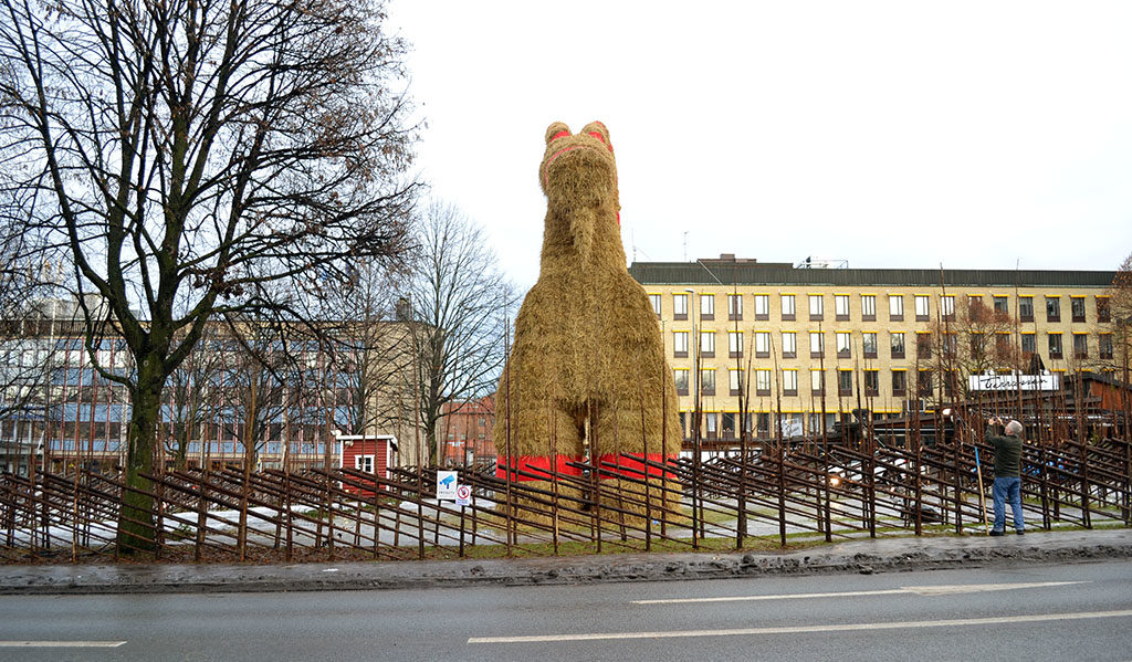 Front look of Gävlebocken
