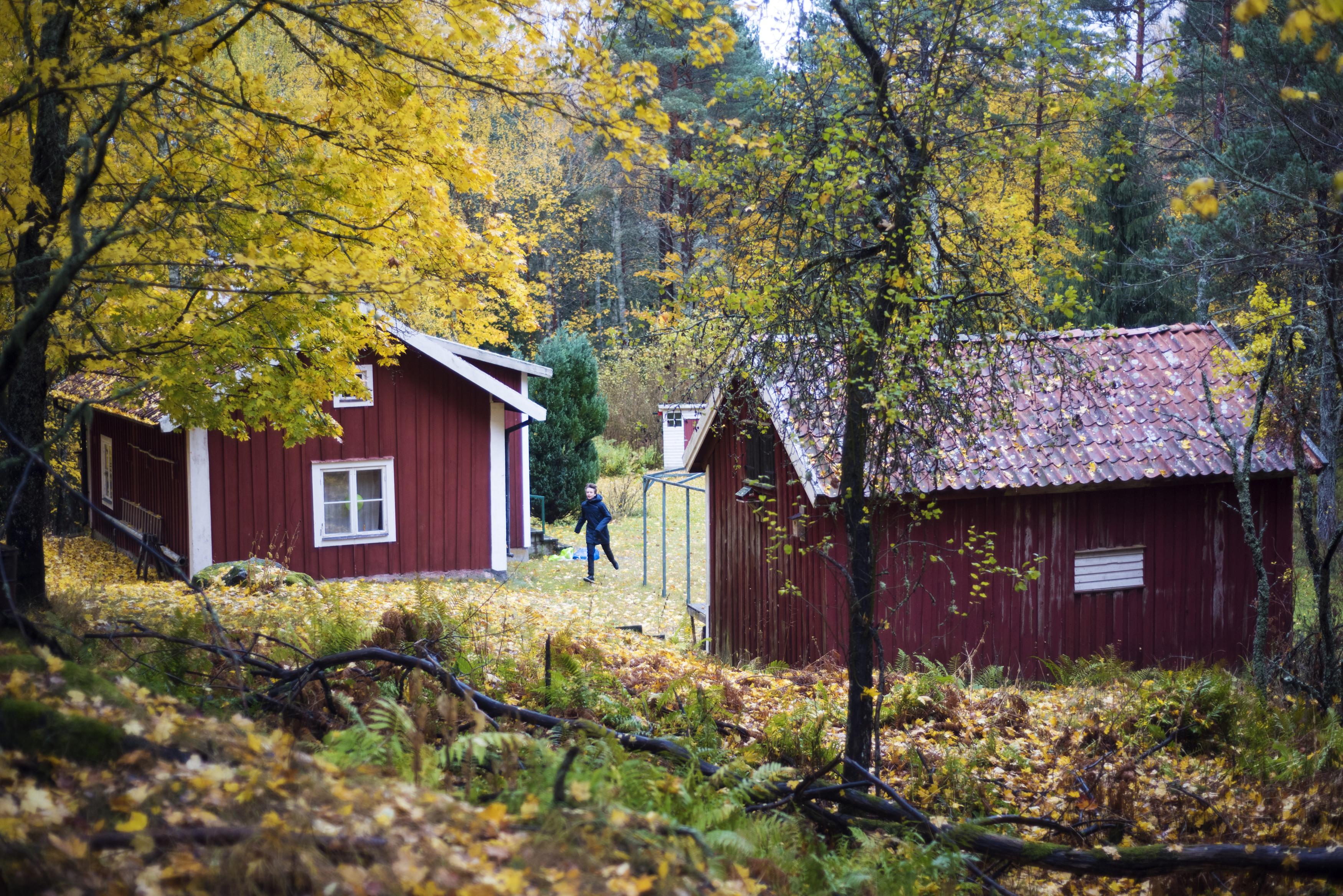 Source Ulf Lundin Imagebank Sweden Se