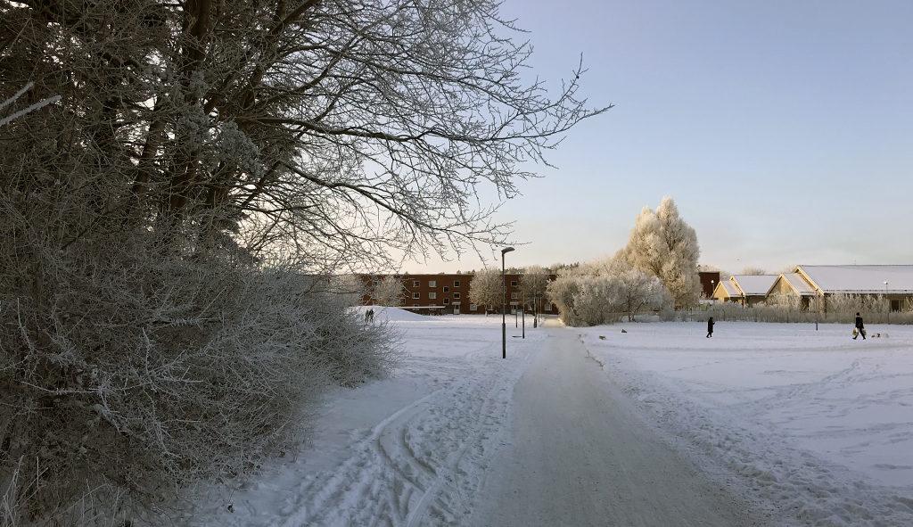 Flögsta in the winter