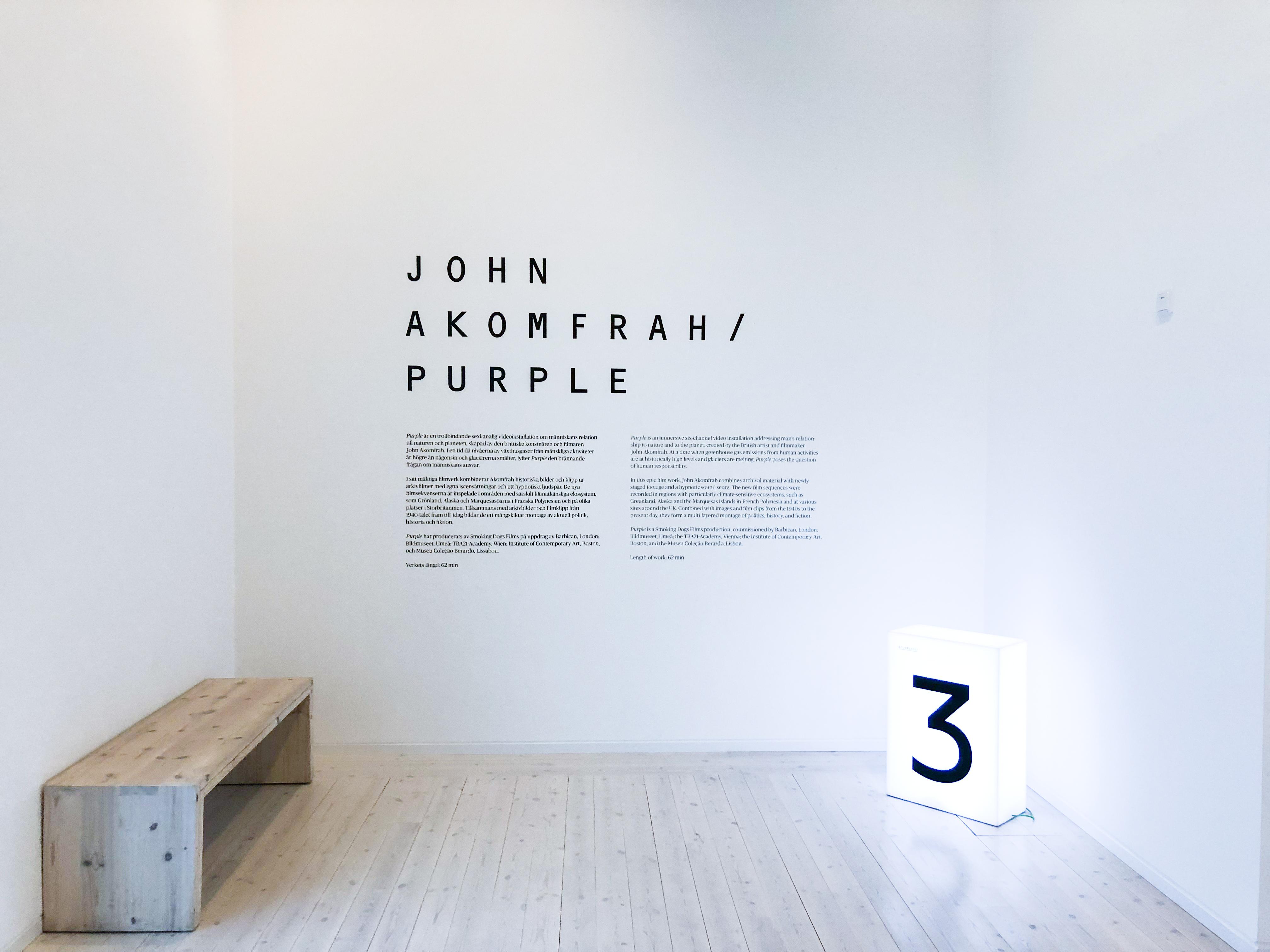 4 år tillsammans present Bildmuseet +