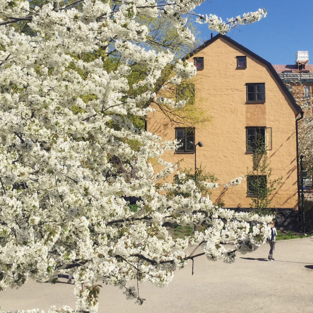 A dreamy building and blossom in Stockholm, May 2018