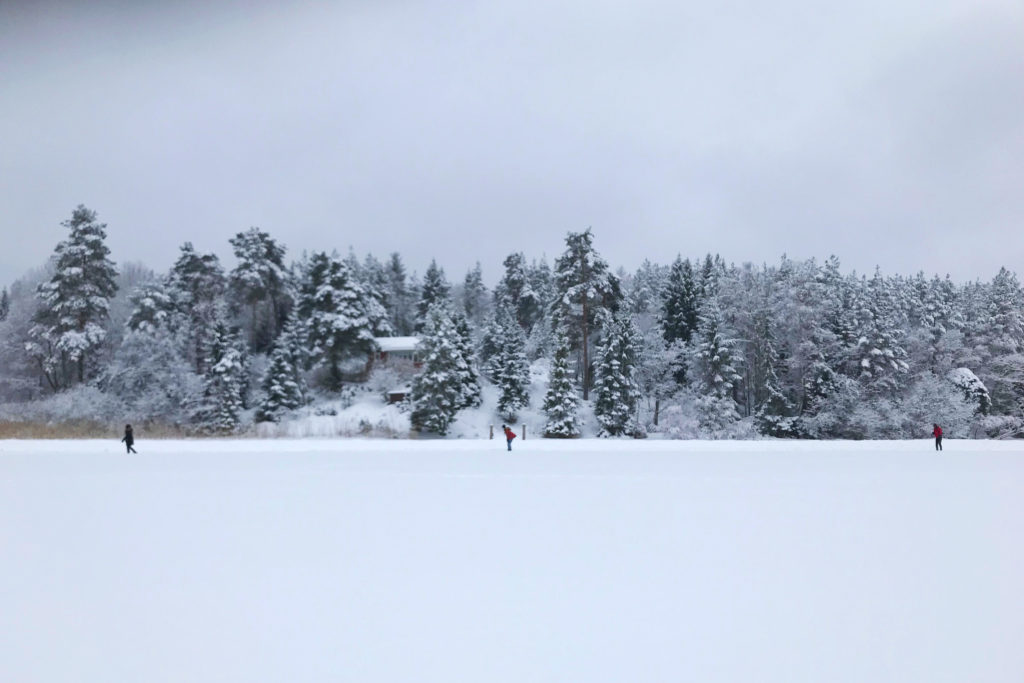 Photo: Usisipho // Fjällnora in the winter