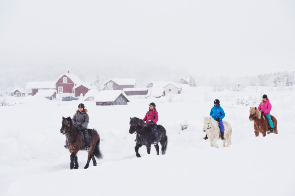 horsebakc riding in lapland during winter