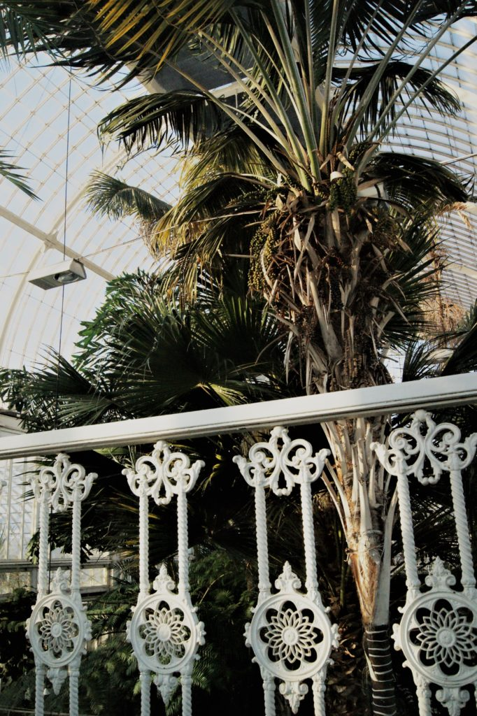 Top floor balcony in the Palmhouse/ Credit: Katharina