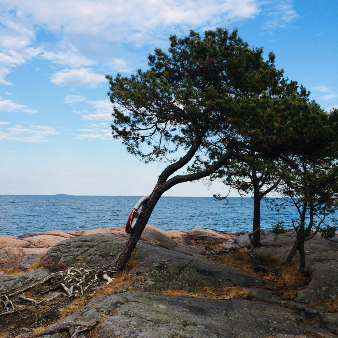 Baltic Sea/ Credit: Katharina