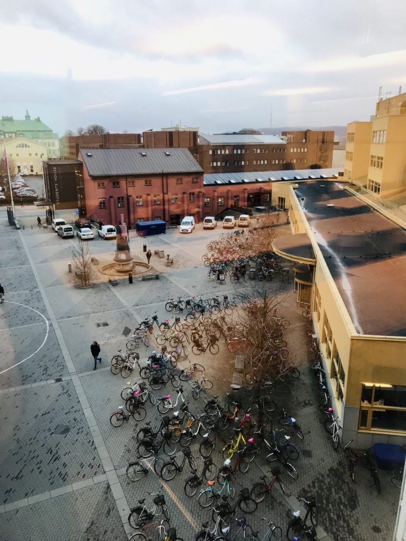 Campus view from Jönköping International Business School/ Credit: Katharina