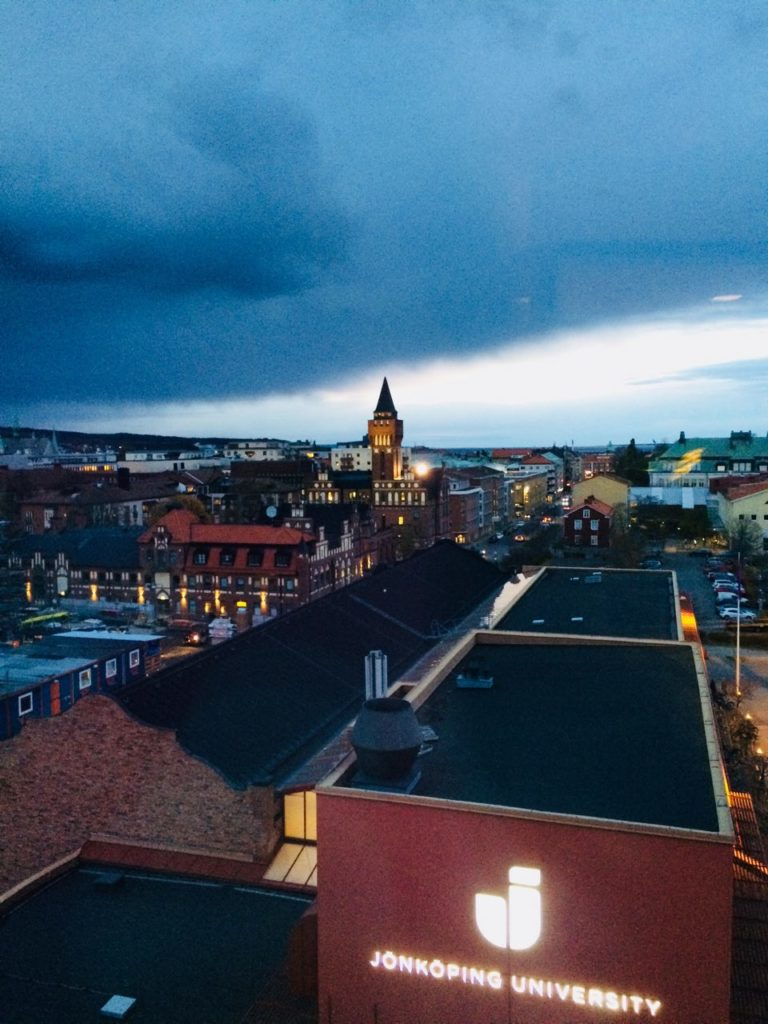 View from Jönköping International Business School/ Credit: Katharina