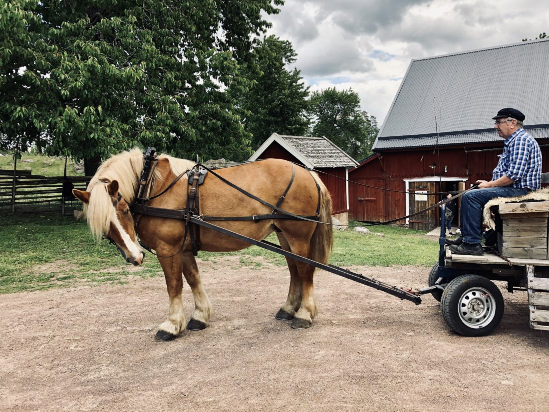 Horse carriage/ Credit: Katharina