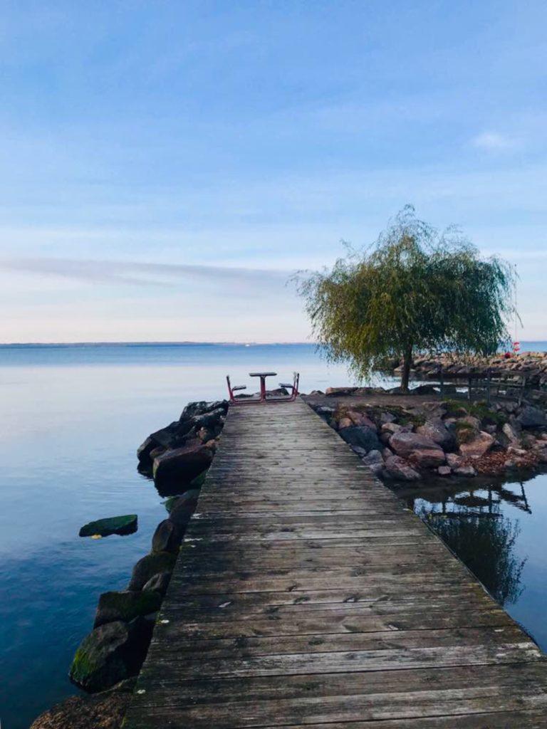 Mini marina/ Credit: Katharina