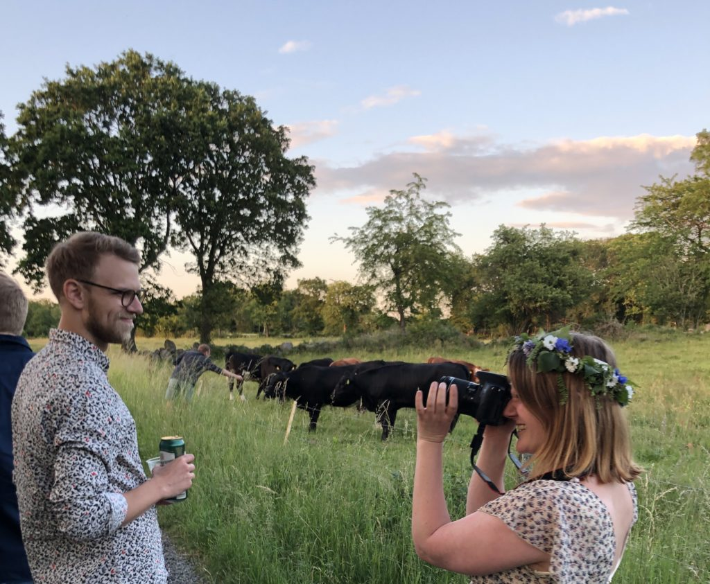 A woman taking a photo of her partner, in rural Sweden near some cows