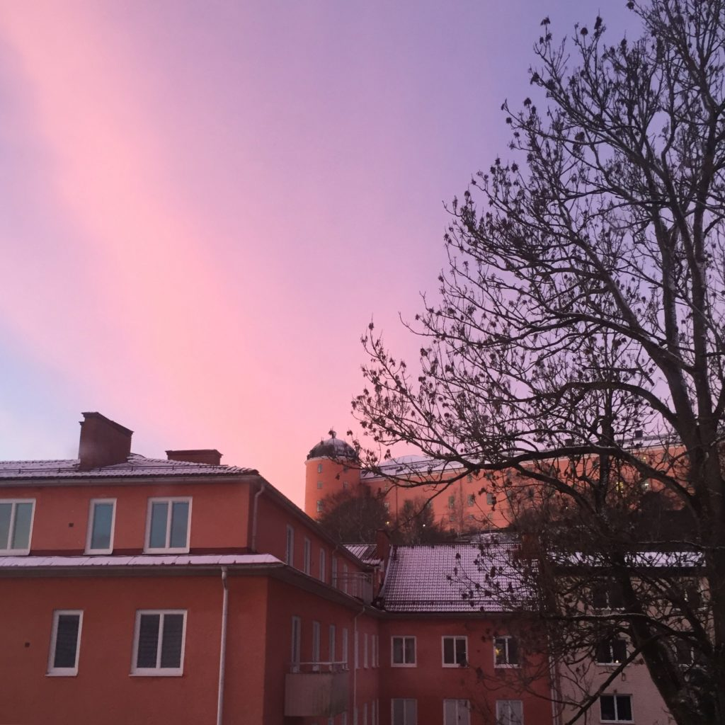 Pink sky early in the morning