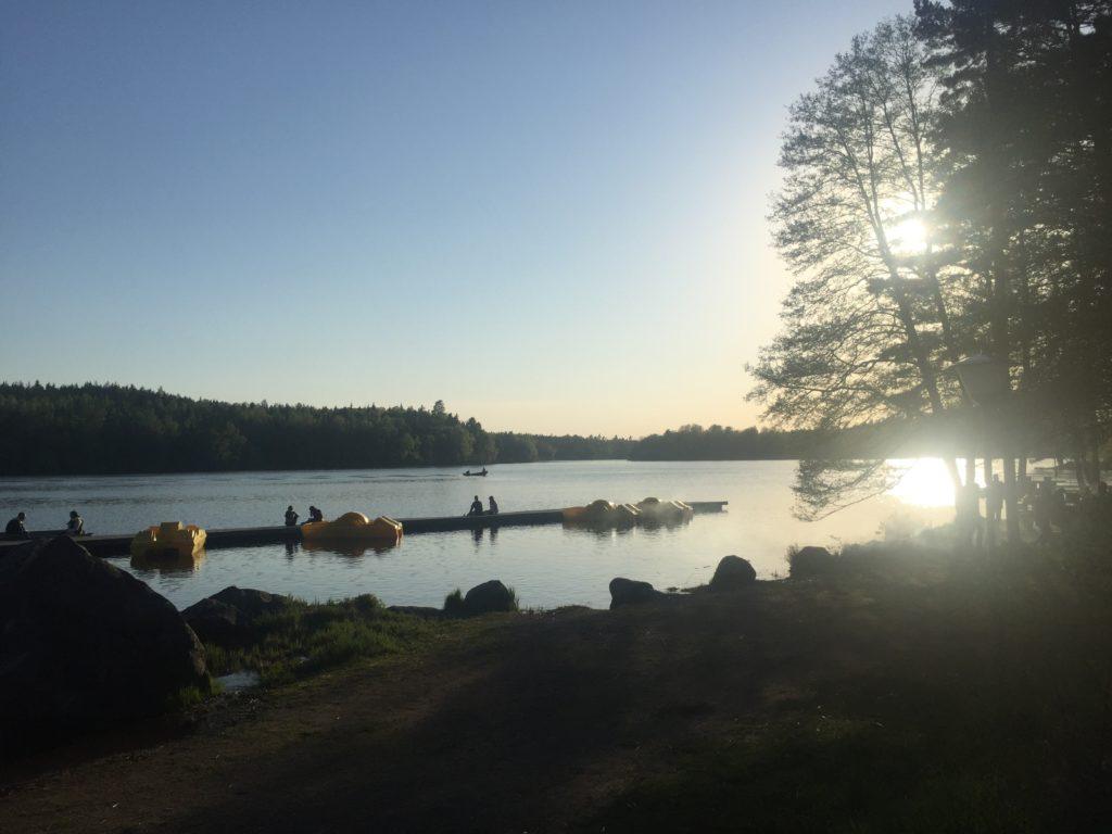 Fjällnora, Uppsala 2018