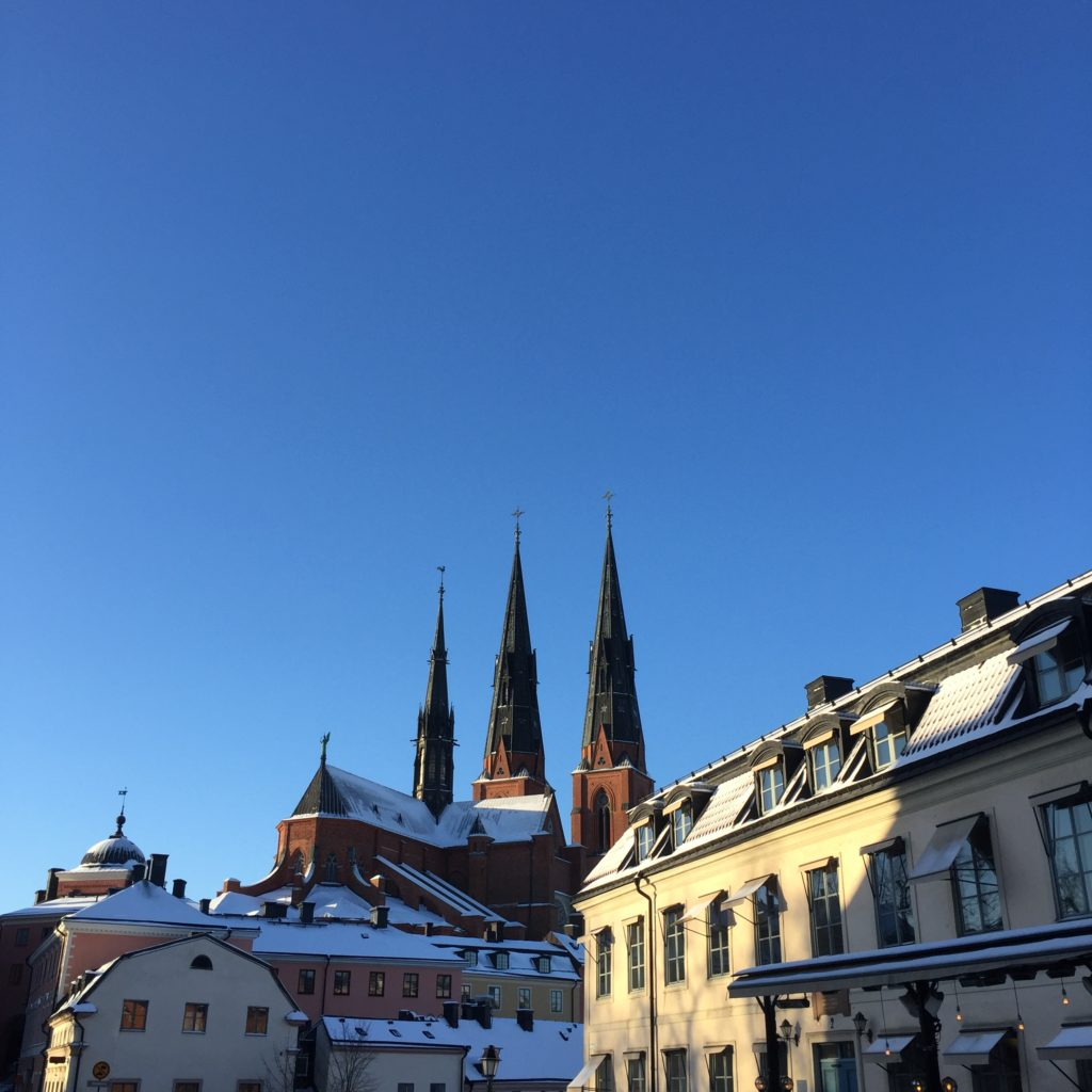 Uppsala skyline with snow on the rooftops
