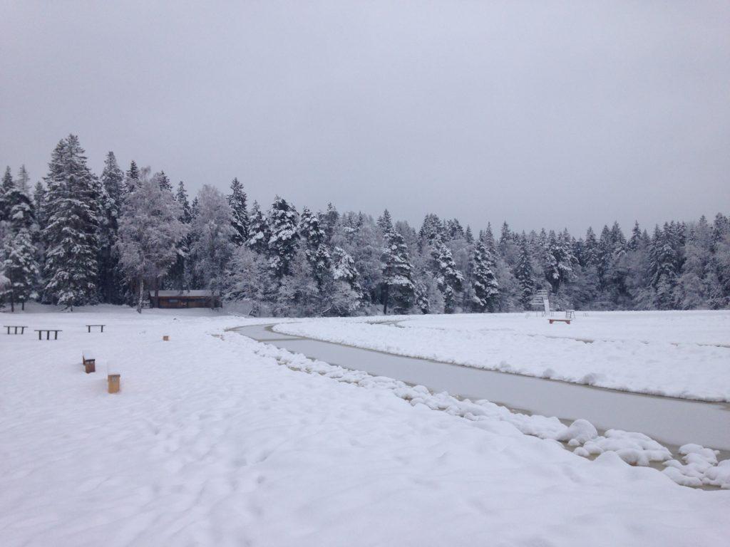 Frozen lake and skating spot