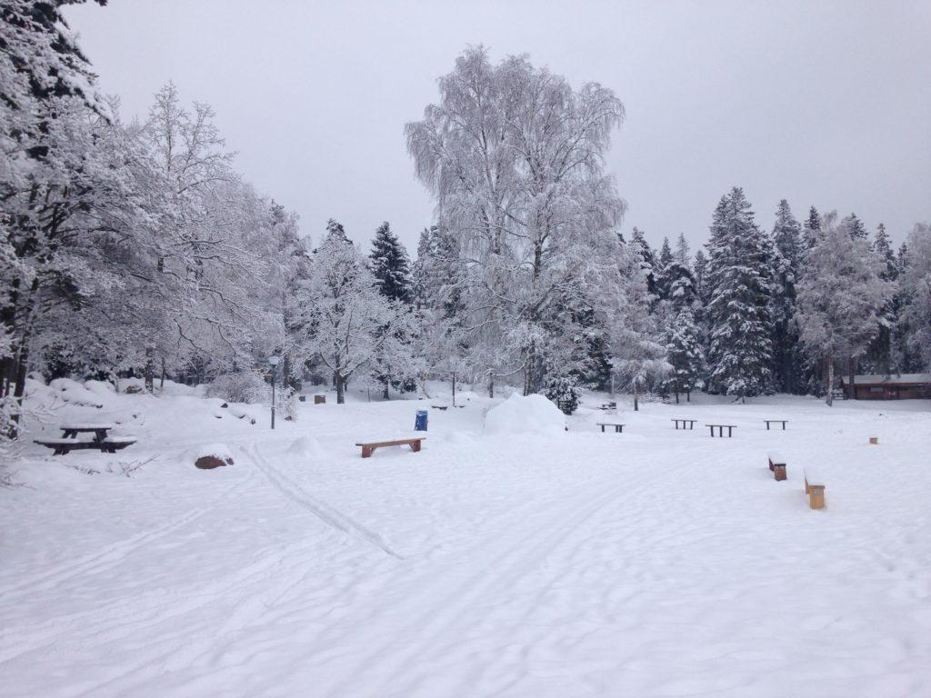 Snowy landscape, Uppsala county