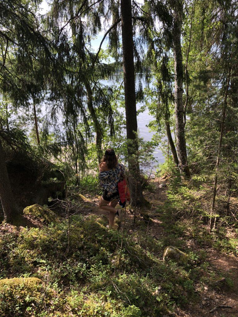 Woodland walk, July 2018