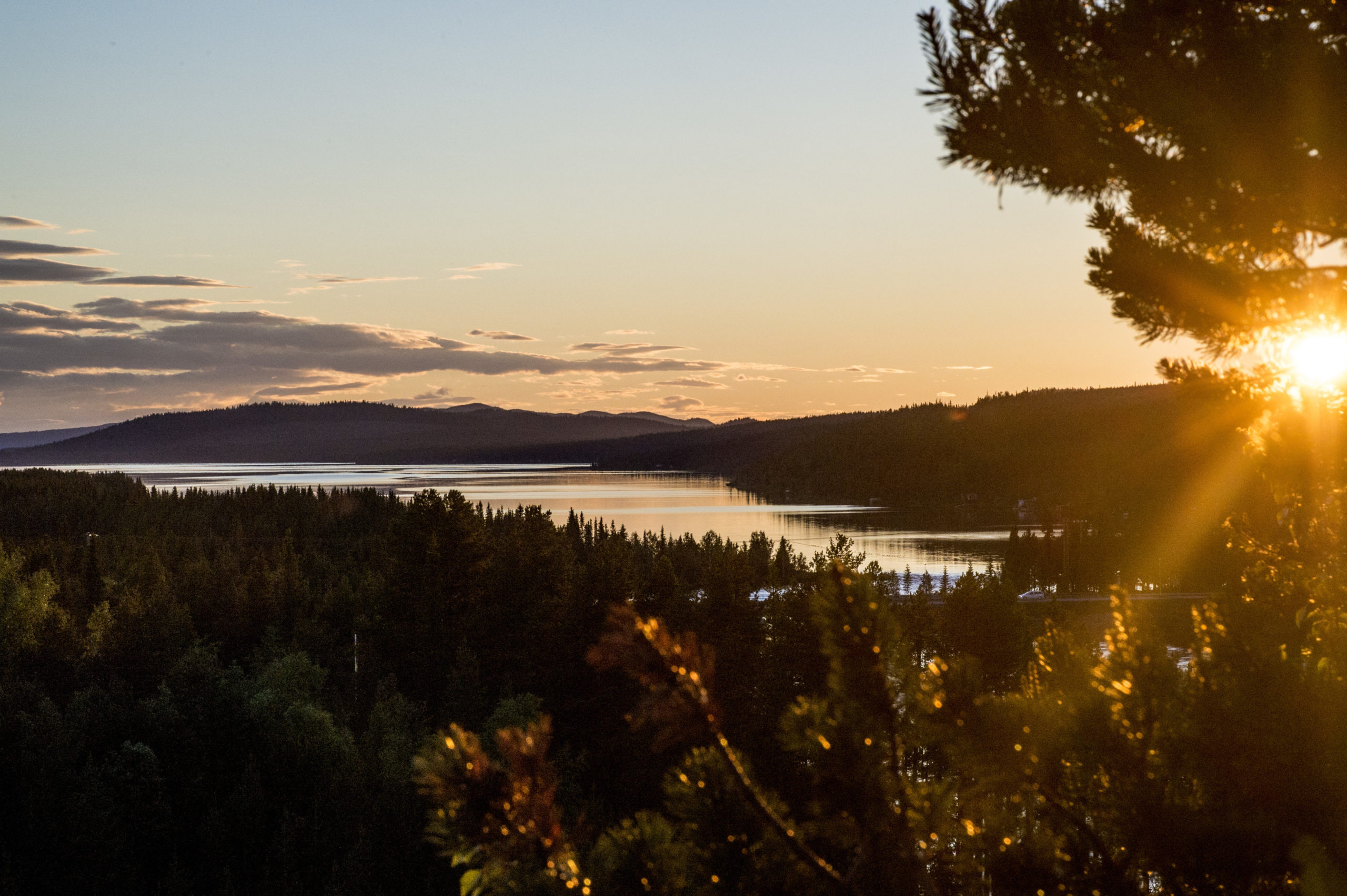 A love letter to the Swedish Sun (in winter) | Study in Sweden: the student  blog